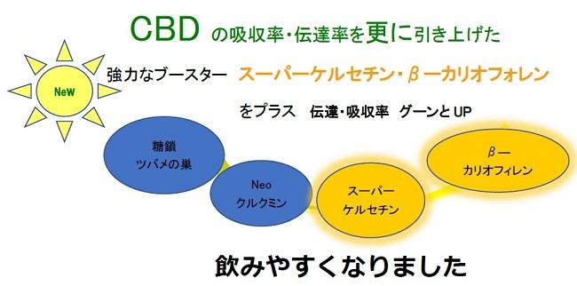 白姫CBDオイルevolution 2