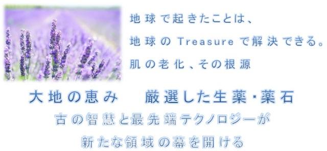 肌 蘇生レシピ  〜本質アプローチ型〜