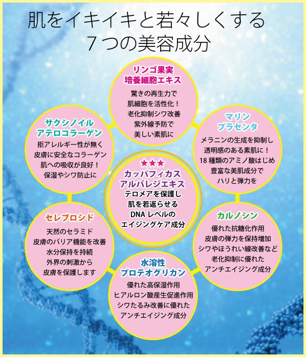 白姫レディーレ7つの美容成分