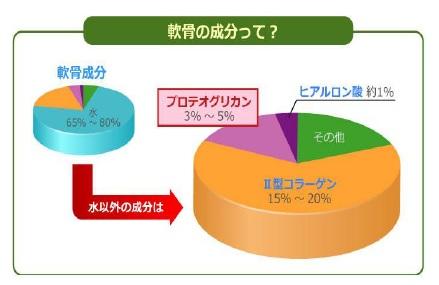 水溶性プロテオグリカン*(北海道産原料)