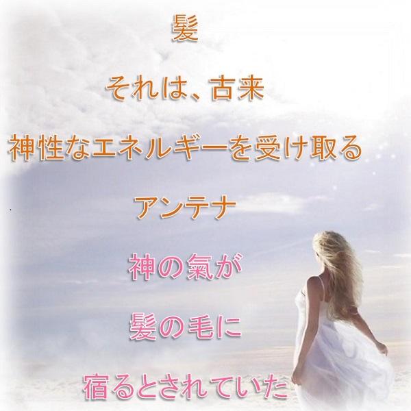 白姫シャンプー